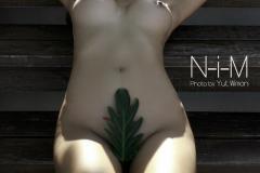 NM41A_1080_1080
