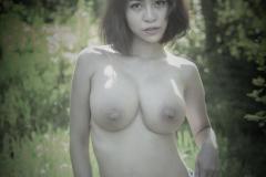 NAA_4032A_1080_1080